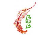 BSAB Candles