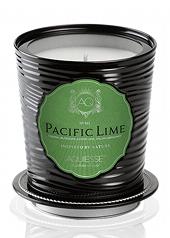 Aquiesse Pacific Lime Portfolio Tin Candle