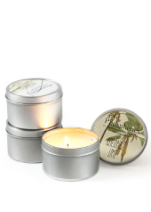 Phosphenes Coconut Lime Travel Tin Candle