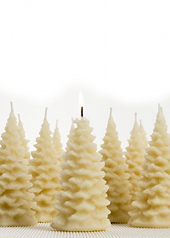 Queen B Beeswax Christmas Tree Candles
