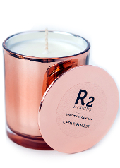 R2 Designs Cedar Forest Copper Candle