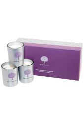 Royal Doulton Gardenia & Lotus Flower Votive Candle Gift Set