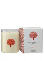 Royal Doulton Mandarin & Cassis Candle