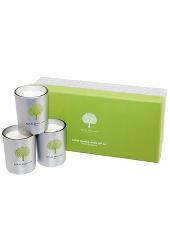 Royal Doulton Vanilla & Jasmine Votive Candle Gift Set   .....Last Stock Available